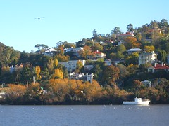 Tamar River, Launceston