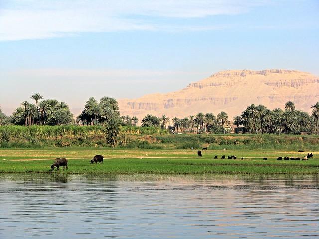 IMG_4612PMR Nile Cruise