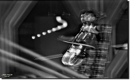 Trio Violin Cello