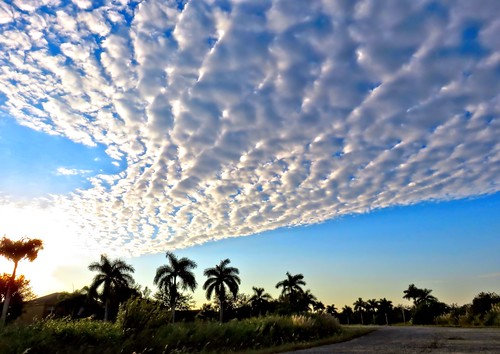 Altocumulus Clouds HDR COREL 20150203