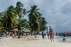 Archipielago de San Blas - Isla Perro