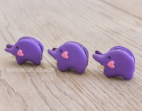 Blueberry Elephant Macarons