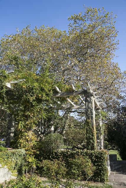 Parque de Mataleñas, Santander
