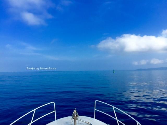 今日はベタ凪の中、気持よく出航です♪