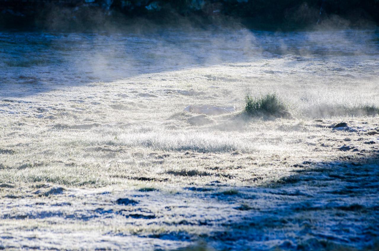 La mañana del 12 junio resultó ser la madrugada más fría del año 2016, con temperaturas inferiores a 2 grados en algunos sectores del Paraguay, como en la ciudad de San Miguel que amaneció con 0 grados y el fenómeno pudo notarse en los pastizales. (Elton Núñez)