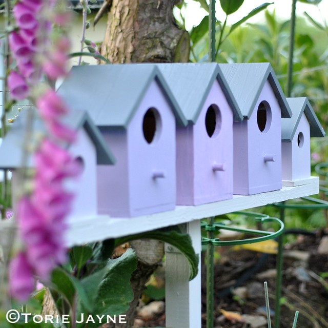 Birdhouses 6