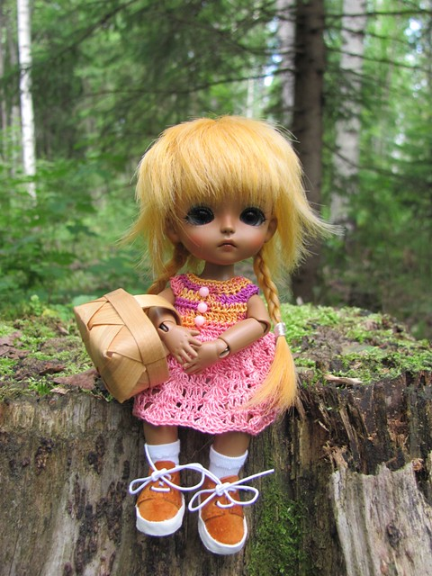 Ruska in the forest