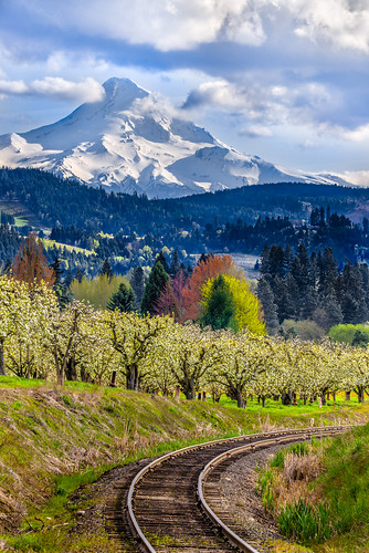 oregon train unitedstates tracks fav20 flowering hoodriver pinegrove fruitgrove fav10 floweringfruittrees
