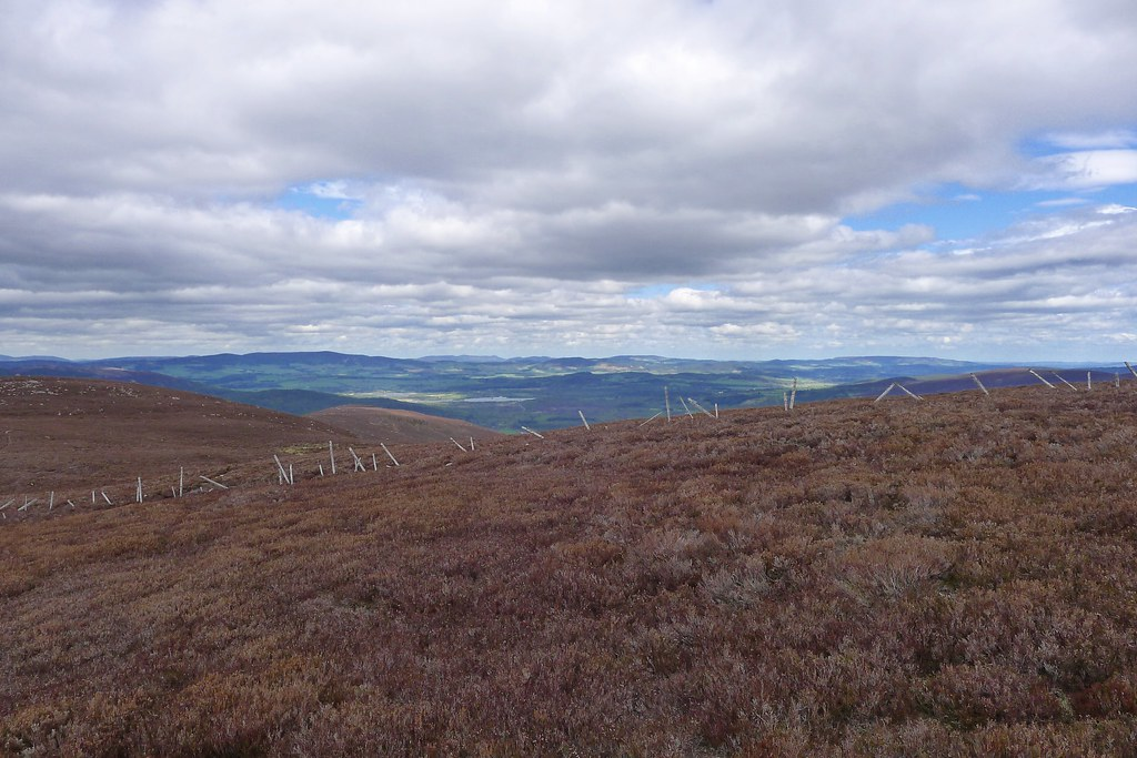 Bennachie and Aberdeenshire hills from Pannanich Hill