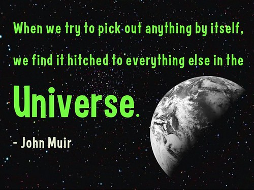 When we try to pick out anything by itself, we find it hitched to everything else in the Universe - John Muir