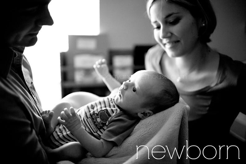 newbornmouse