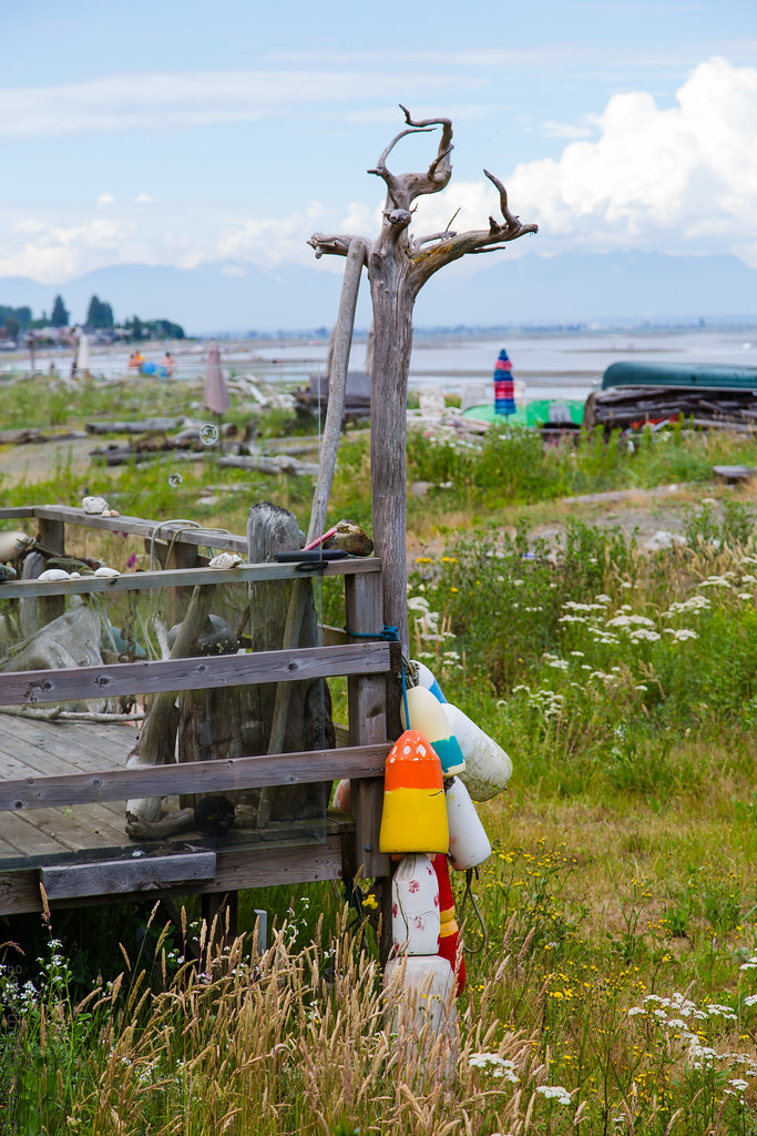 Maple Beach, Point Roberts