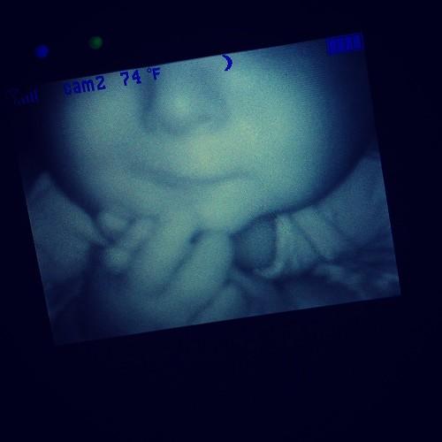 photo 1(19)