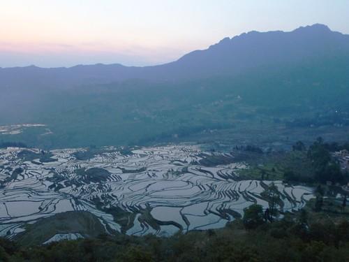 Yunnan13-Yuanyang 1-Duoyishu (3)
