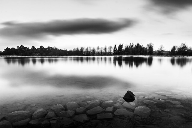 critchley hackle lake_b&w