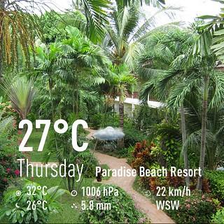 今日のサムイ島 9月19日メナムの老舗リゾート-パラダイスビーチリゾート