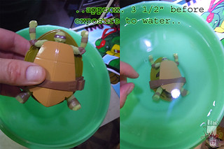 WICKED COOL TOYS :: Nickelodeon TEENAGE MUTANT NINJA TURTLES; 'WATER GROW TURTLES' - DONATELLO viii // ..taken to water (( 2013 ))