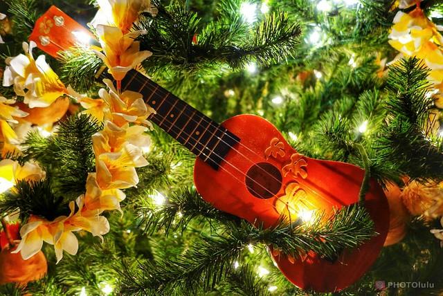 Hawaiian Christmas Dsc Qx100 Flickr Photo Sharing