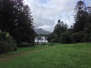 Derreen Gardens
