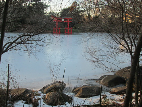 Japanse Hill-and-Pond Garden