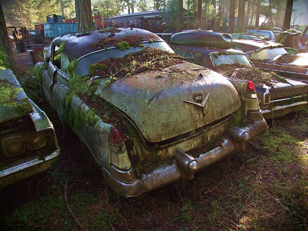 1953 Cadillac rear - Trust Salvage - Auburn WA