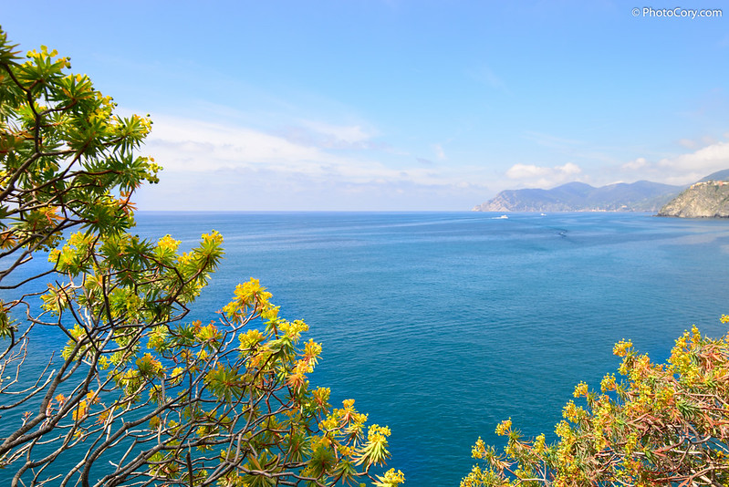 Cinque Terre, Blue sea
