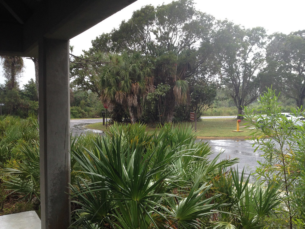 Pelting rain at Everglades National Park