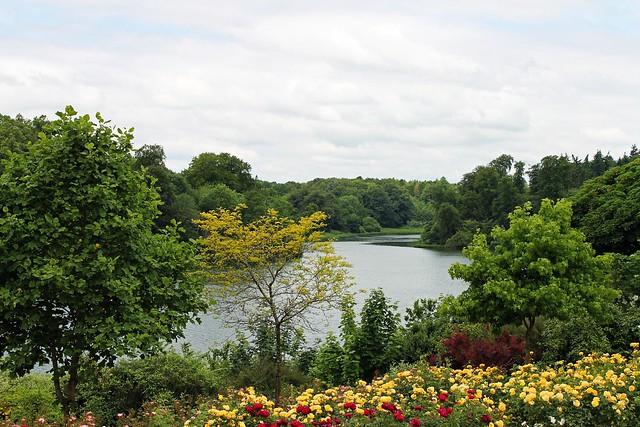 garden river 2