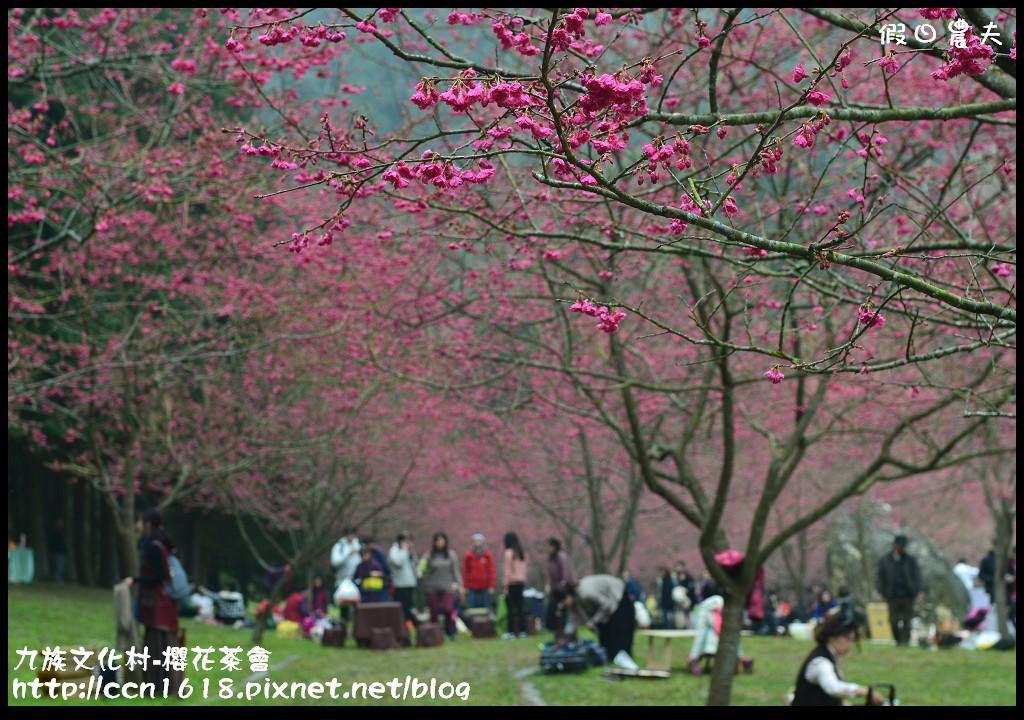 九族文化村-櫻花茶會DSC_4270