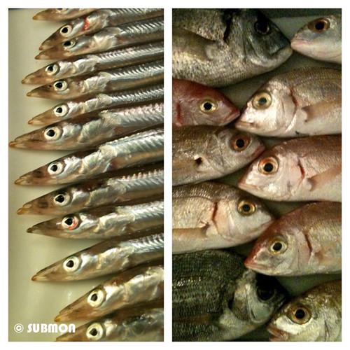 Pescado de una zona de custodia