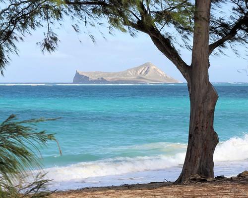 usa canon landscape hawaii paradise oahu pacificocean waimanalo photosbymch