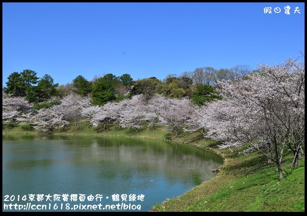 2014京都大阪賞櫻自由行.鶴見綠地DSC_1388