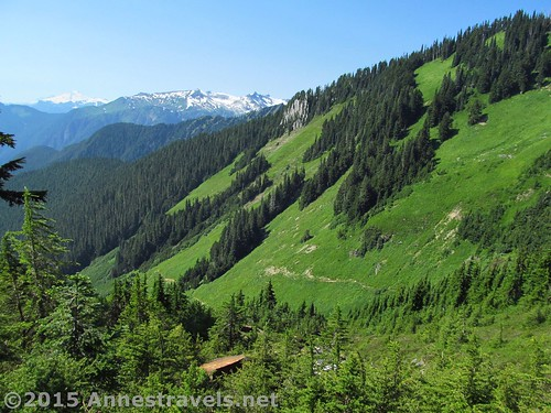 Above the meadows on the Hidden Lake Lookout Trail, Mount Baker-Snoqualmie National Forest and North Cascades National Park, Washington