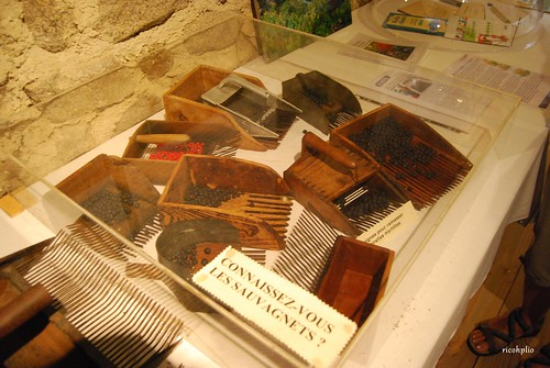 Musée de la Fourme et des traditions - Sauvain (42)