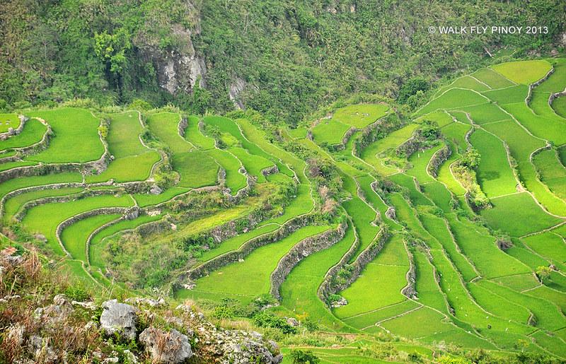 View from Kiltepan Peak, Sagada, Philippine Cordilleras