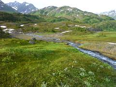 Upper Winner Creek