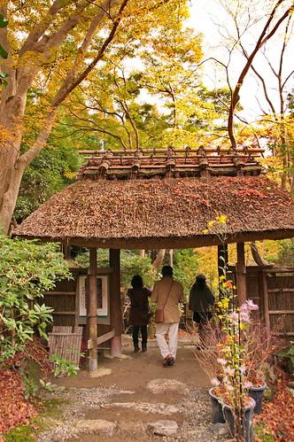 【写真】2012 紅葉 : 祇王寺/2021-09-05/IMGP7849