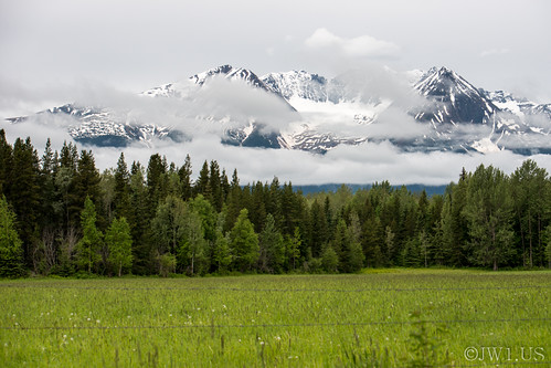 trees white mountain canada mountains green horizontal forest landscape scenery britishcolumbia land northamerica grasses smithers majestic stockphotography westerncanada joshwhalenphotography whalenphotography joshwhalencom bcalaskatrip