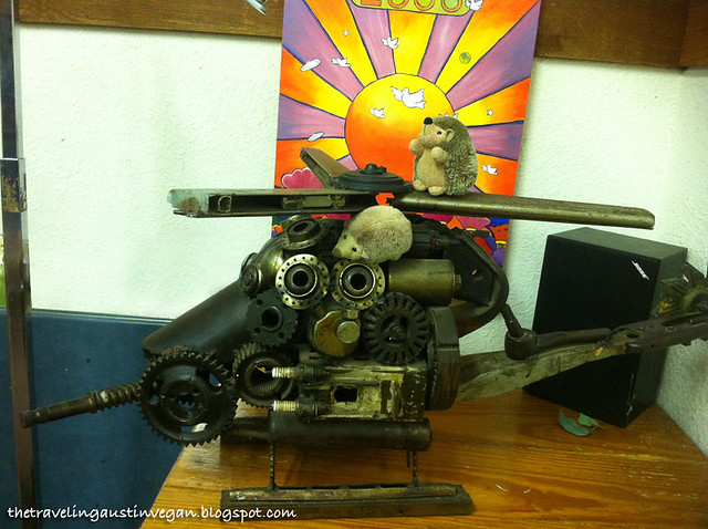 Hedgehogs On A Helicopter - The Crazy Cajun, Port Aransas, TX