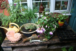 Courtyard table after the rain
