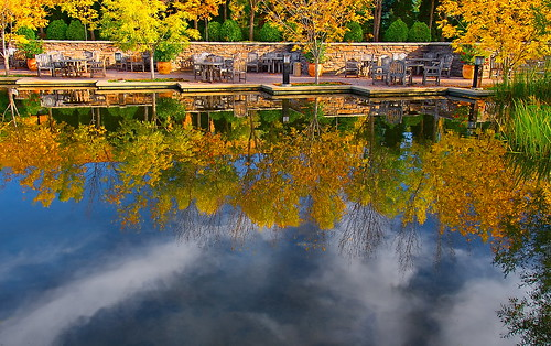 autumn color water vw gold cloudy reflect sit