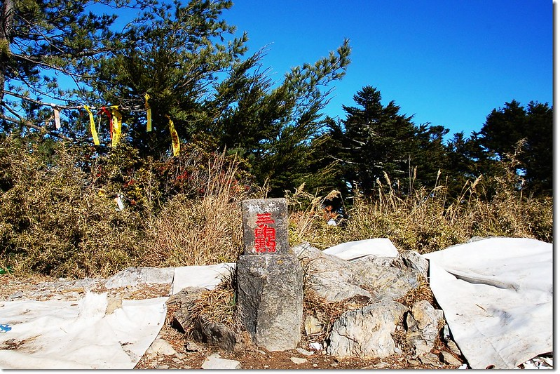 西巒大山森林三角點(Elev. 3081 m) 1