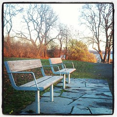 #Autumn #Oslo #Norway #InstaOslo #InstaClick #Park #Benches