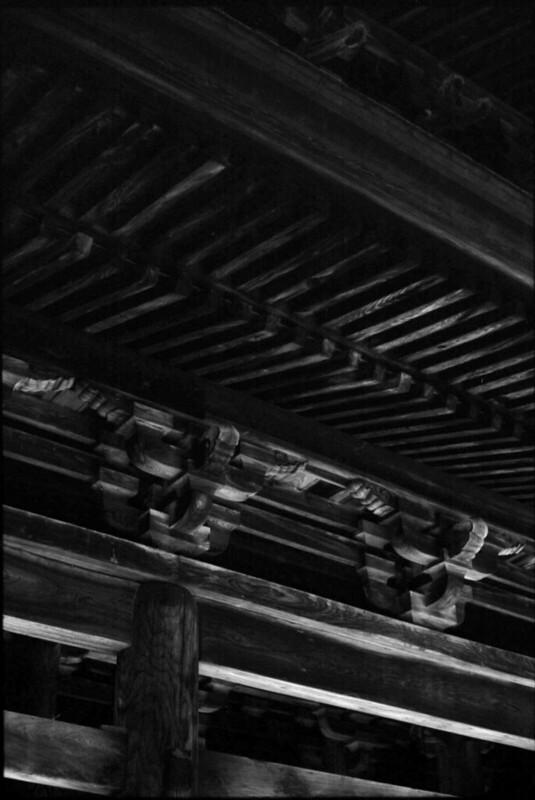 20131121 Leica3fSummicron50 NP100SPD 011