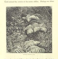Image taken from page 358 of 'W. H. Seward's Travels around the World. Edited by O. R. Seward, etc'