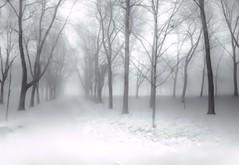 hiver 14
