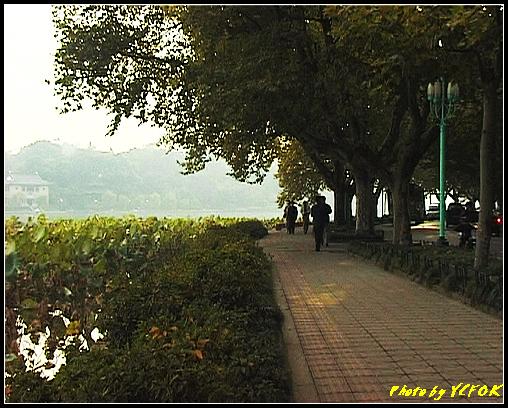 杭州 西湖 (其他景點) - 669 (北山路湖畔 背景是孤山)
