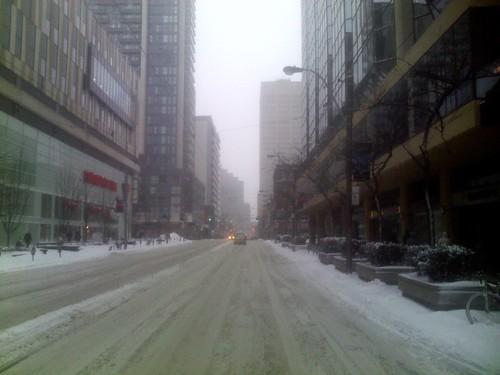 Winter snowfall, 12 March 2014 (7)