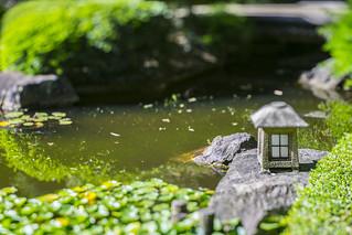 Japanese Garden Tilt Shift