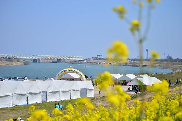 筑後川くるめ菜の花マラソン大会